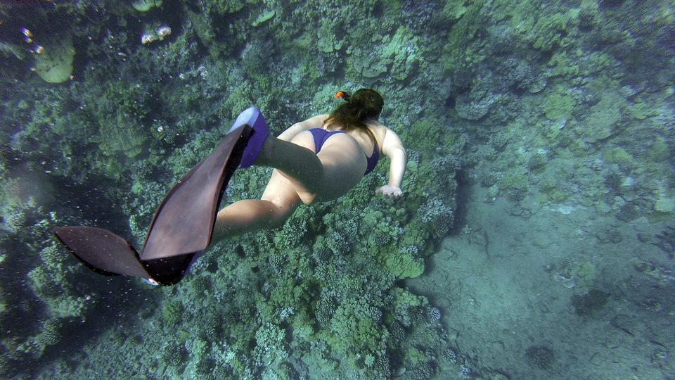 Snorkeling Portorož